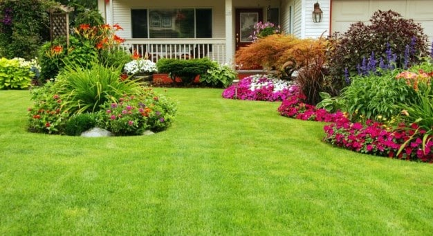 Are You Concerned About Pesky Shrubbery - Get Rid Of The Same With Electric Weed Eater