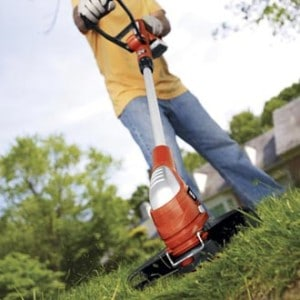 Can Weed Eaters Be Used To Cut Hedges And Pesky Shrubs