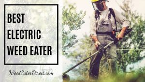 What is the Best Electric Weed Eater in 2020? (Top 5 List)