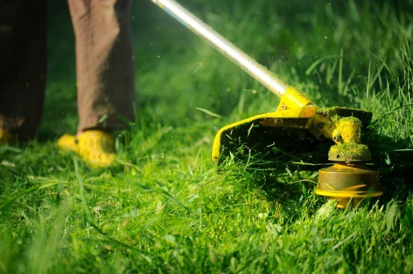 When will you need a new weed eater
