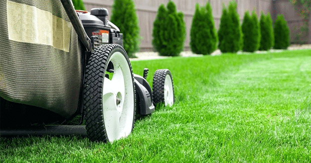 Should You Establish a Lawn Care Business? - weedeaterdirect.com