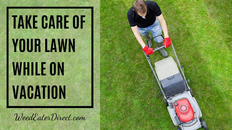 How do you take care of your lawn when you are on a vacation