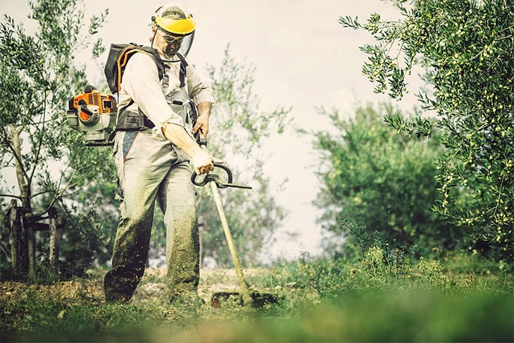 best battery operated weed eater for the money