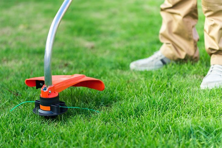 best commercial weed eater brand