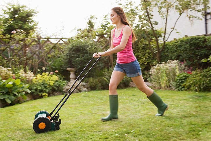 best 4 cycle weed trimmer